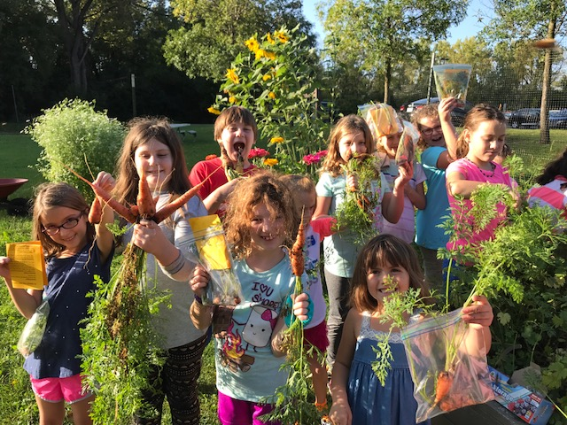 Heilicher students harvest carrots as part of Project Footprint